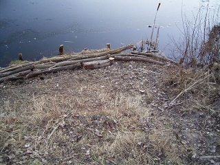 winterschaden-2011-2